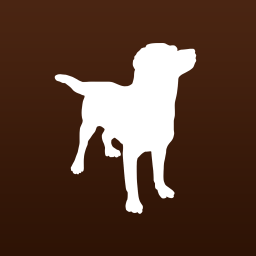 MyDog-HealthCare